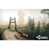 Unity 3D 4.5.1f3