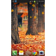 Maple Leaf Live Wallpaper 1.0.8