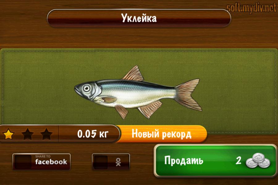 Мод на рыбное место