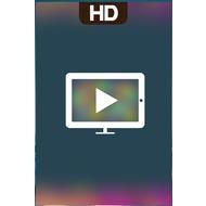 Русское Домашнее ТВ HD 1.6
