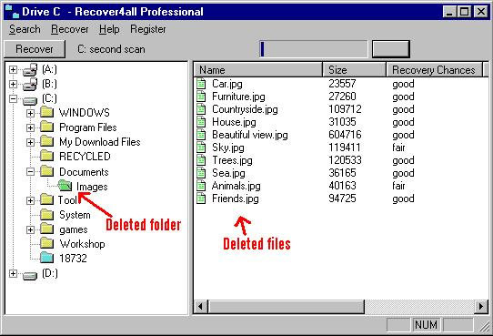 Recover4all professional 2.15 скачать