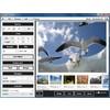 Скриншоты BImageStudio 1.2.1