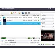 Скриншот Xilisoft MKV Converter - список загруженный файлов