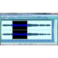 Digital Audio Editor 7.6.0.252