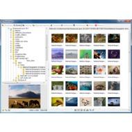 Скриншот PhotoScape - вкладка просмотра изображений.