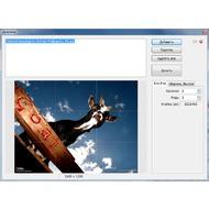Скриншот PhotoScape - расщепление снимков нате паче мелкие кусочки по мнению сетке.