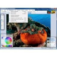 Скриншот Paint.NET