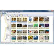 Скриншот XnView - Вкладка браузера, в которой мы можем просматривать файлы и папки также, как в Проводнике
