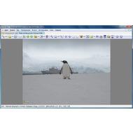 Скриншот XnView - Просмотр изображения
