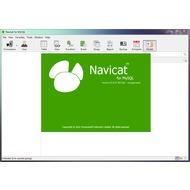 Скриншот Navicat for MySQL