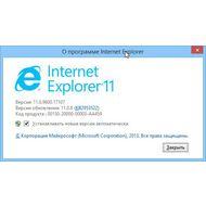 Скриншот Internet Explorer - информация о браузере