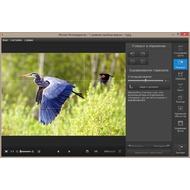 Movavi Photo Editor 3.1.0